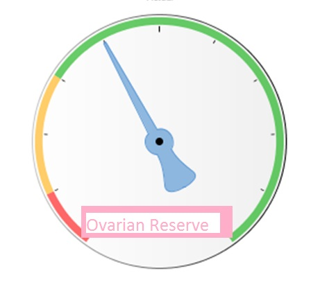 "Seven frequently asked questions on ""Poor Ovarian Reserve"""